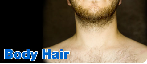 Bullz-Eye Grooming CHannel Body Hair Article
