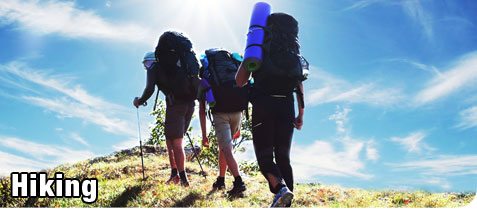 Group of Recreational Hikers, Hiking up a Mountian Trail