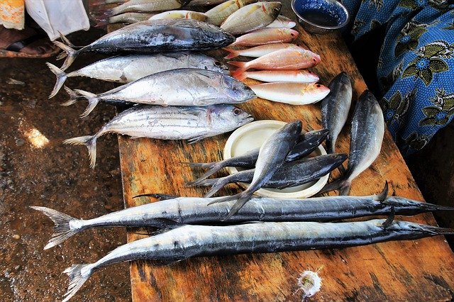 Online Seafood Stores: Where to Obtain Fresh Fish Online